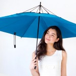 なにこのアイテム!通販ディノスの見たこともない傘