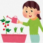 家庭菜園やガーデニングに最適?無印良品の驚くべき収納アイテム